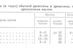 Таблица срока службы древесины