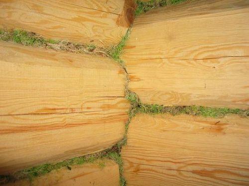 Традиционная конопатка - мох