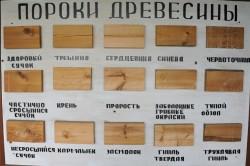 Схема пороков древесины.